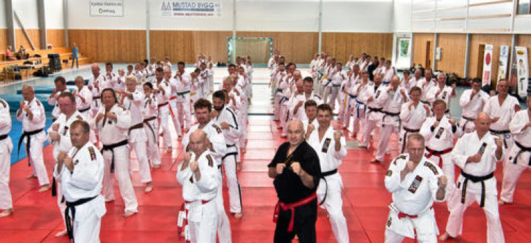 Norway Ju Jitsu camp